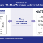 The Shoe Company Survey