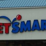 PetSmart Adoption Survey